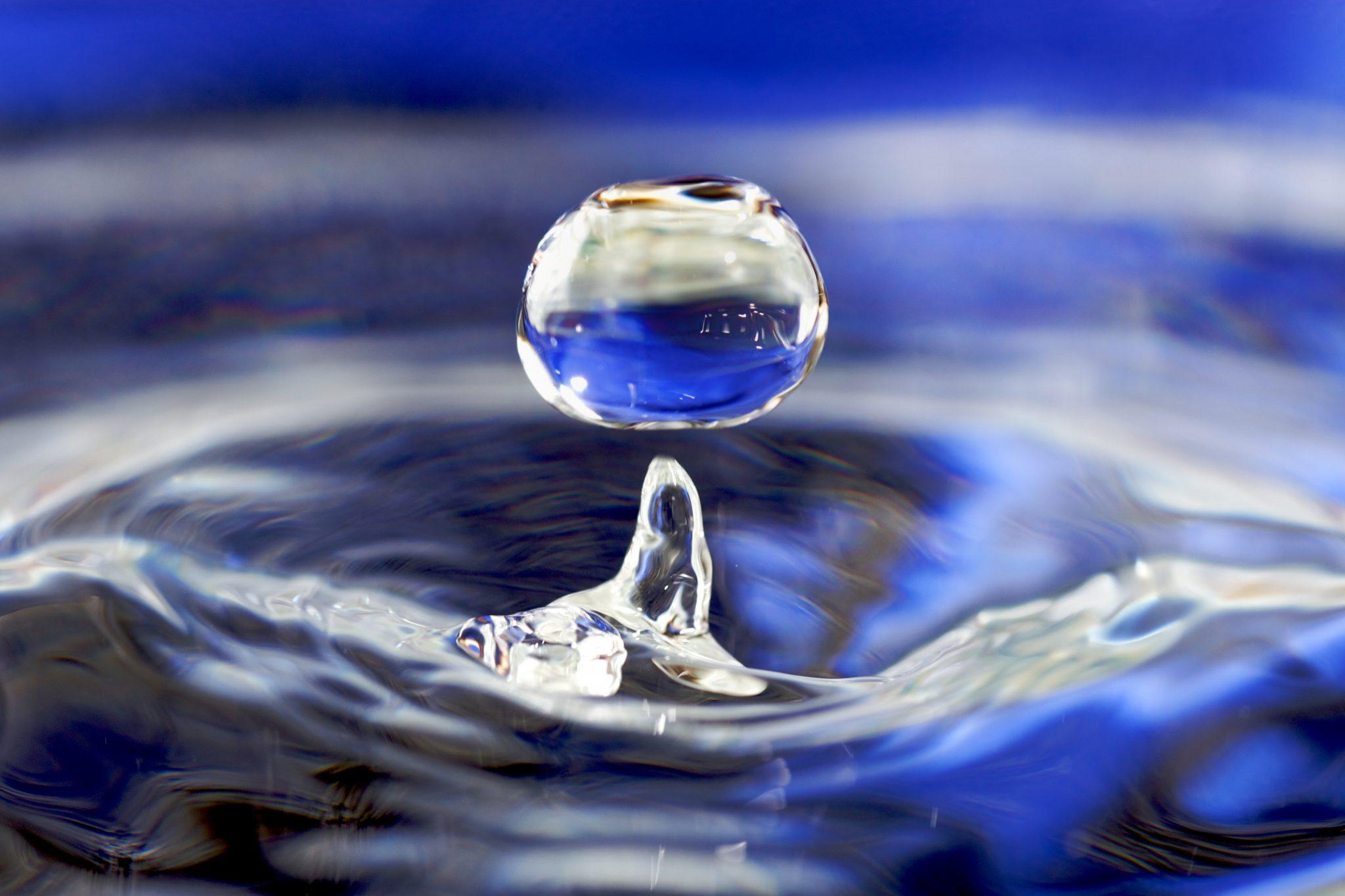 El agua en la gestación
