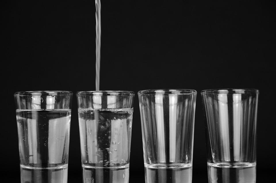 Ingesta de agua